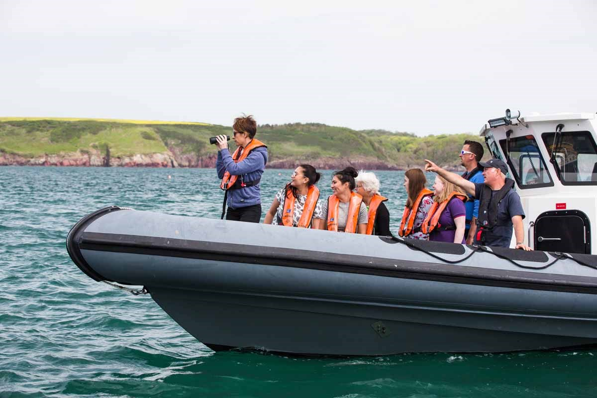 Boat trips from Milford Haven